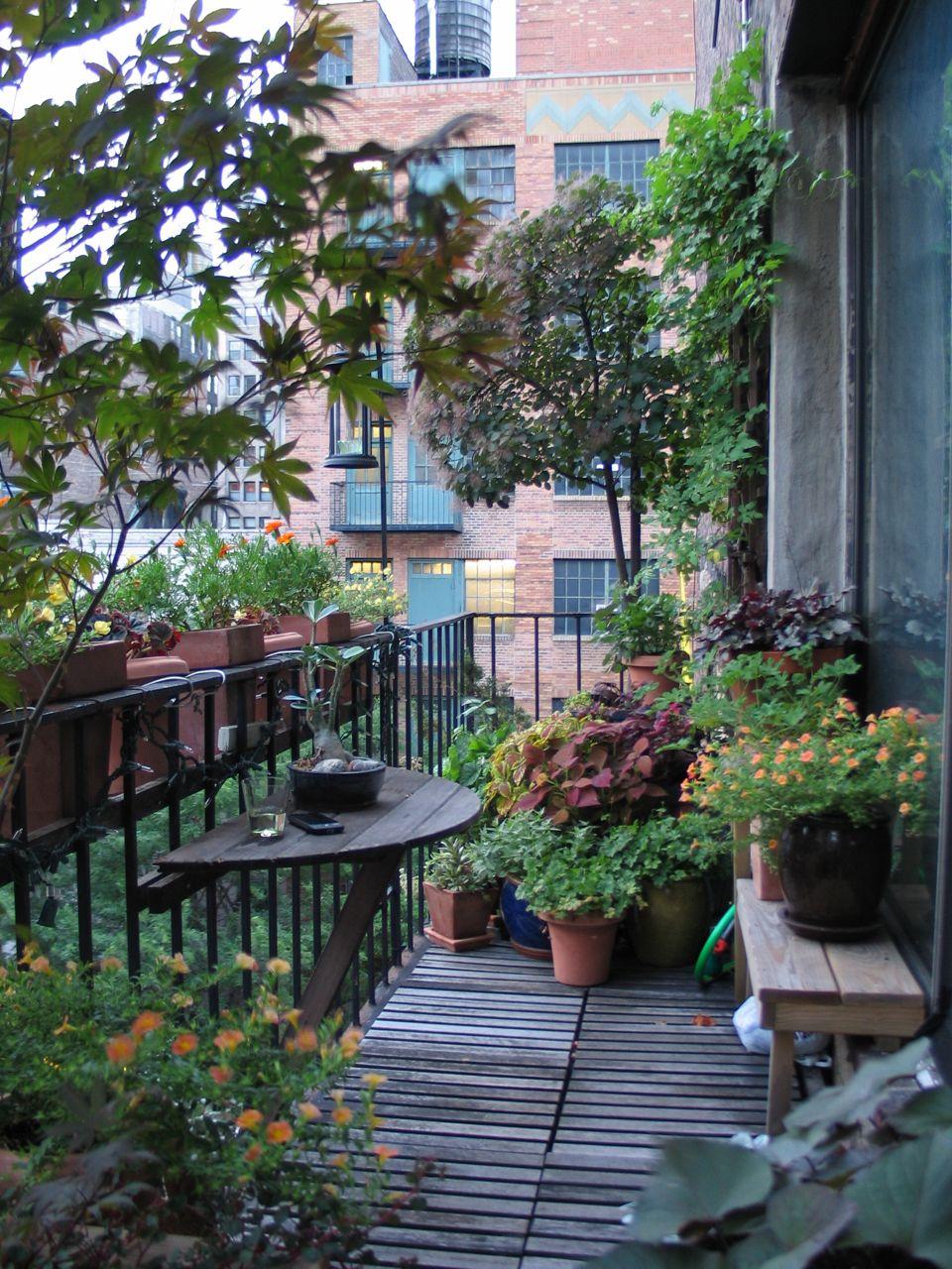 Terrasse en bois et longueur maxi des lames